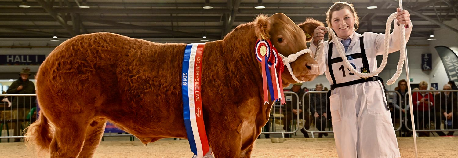 Supreme Beef Champ at Countryside Live 2019